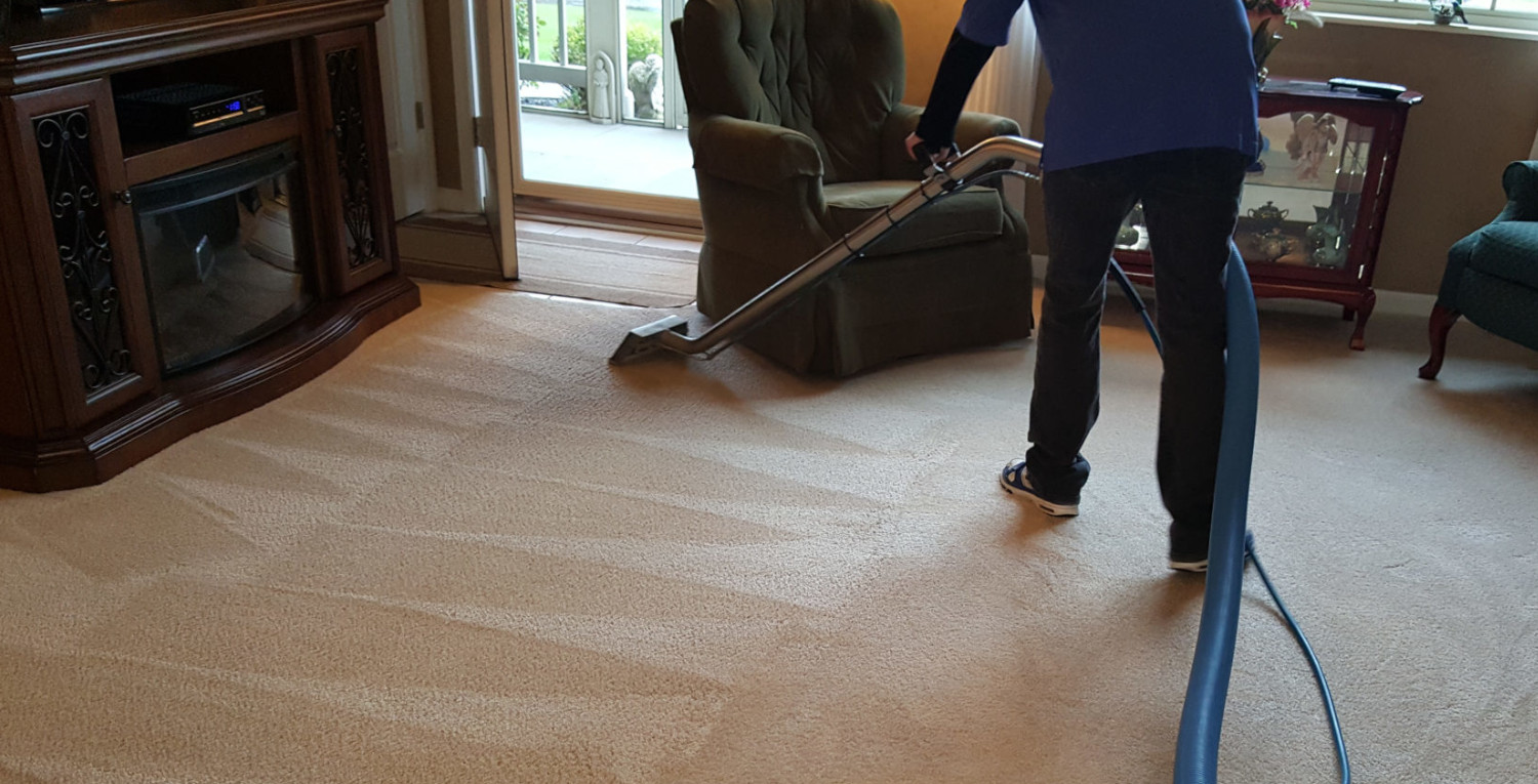 carpet cleaning evoclean